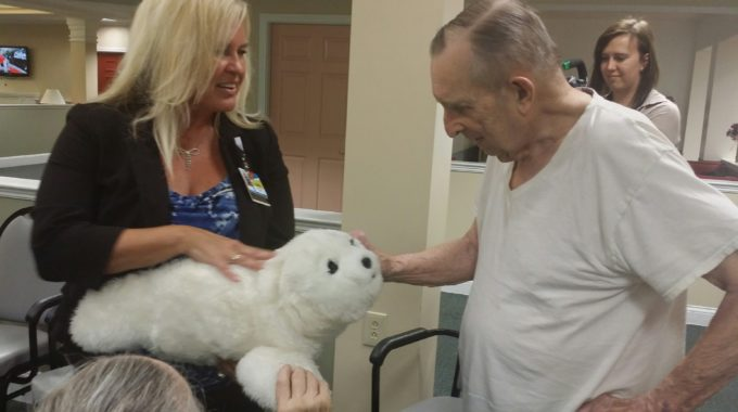 High-Tech Robotic Animal Assisted Therapy Benefits Patients