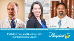 Palliative Care and Quality of Life Interdisciplinary Council