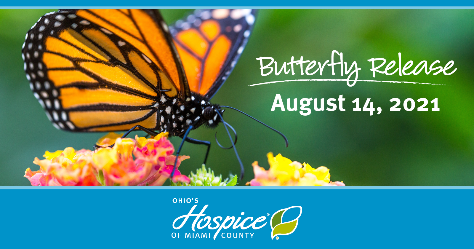 Butterfly Release - August 14, 2021 - Ohio's Hospice Of Miami County